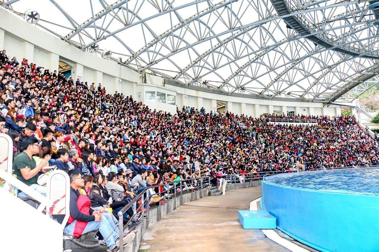 遠雄海洋公園今湧9439遊客入園,破今年單日記錄。圖/遠雄提供