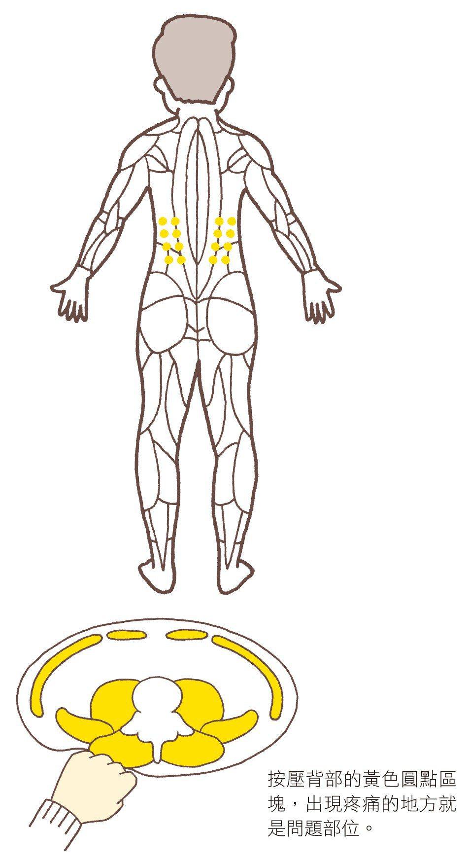 圖/摘自《根治腰痛自癒操:復健科醫生首創疼痛導航,教你每天1動作,只要3分鐘,免...