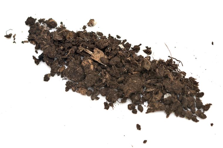 「吃土」常被用來形容月底沒錢的窘境,不過現在「吃土」真的有好處,有研究發現吃土可...