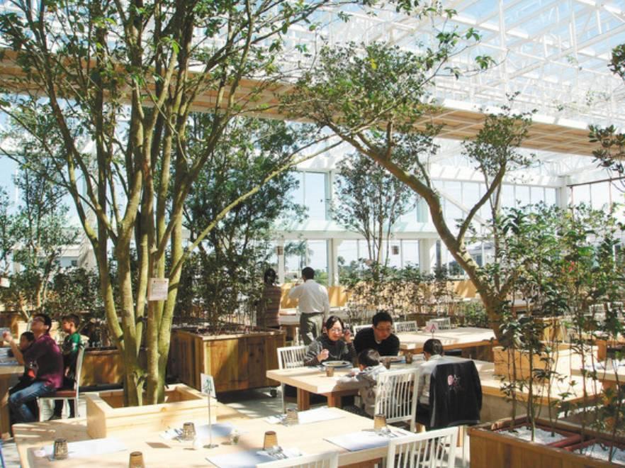 香草菲菲芳香植物博物館是環保署認證的環境教育設施場所,可以在樹下用餐。 本報資...