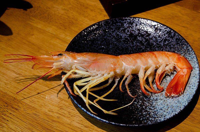 (圖/台灣旅行趣) ▲天使紅蝦碩大的體型連盤子都裝不下啦!