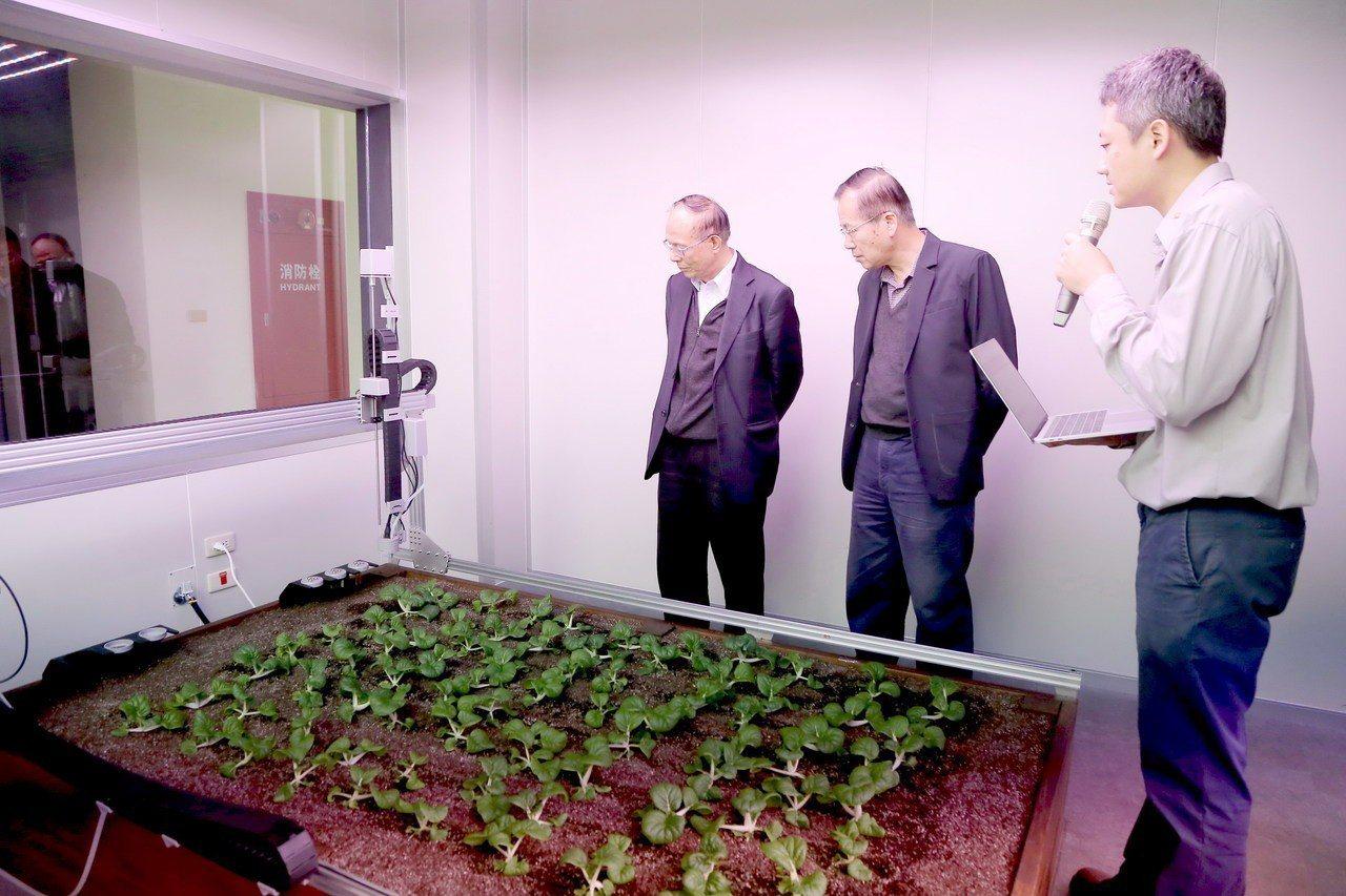 智能環控植物工場揭牌,現場示範播種及澆水功能。圖/南華大學提供