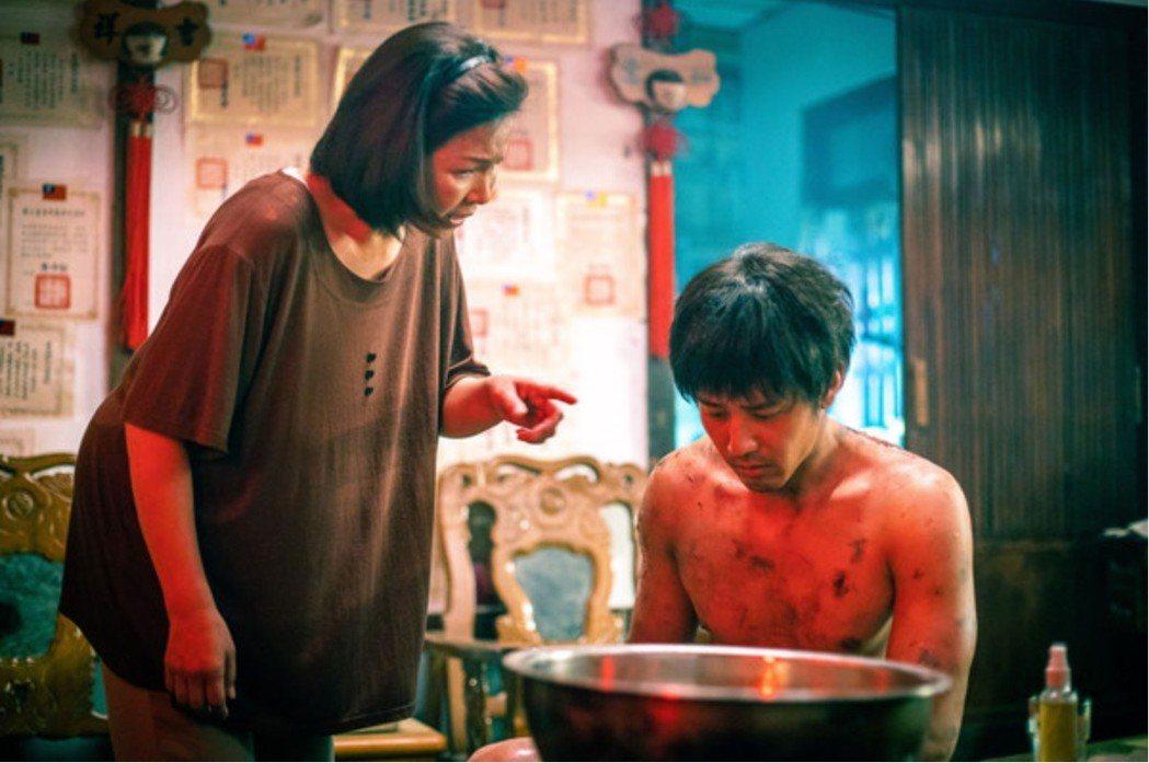 楊貴媚與胡宇威首度扮演母子,對手戲精彩。圖/想亮影藝提供
