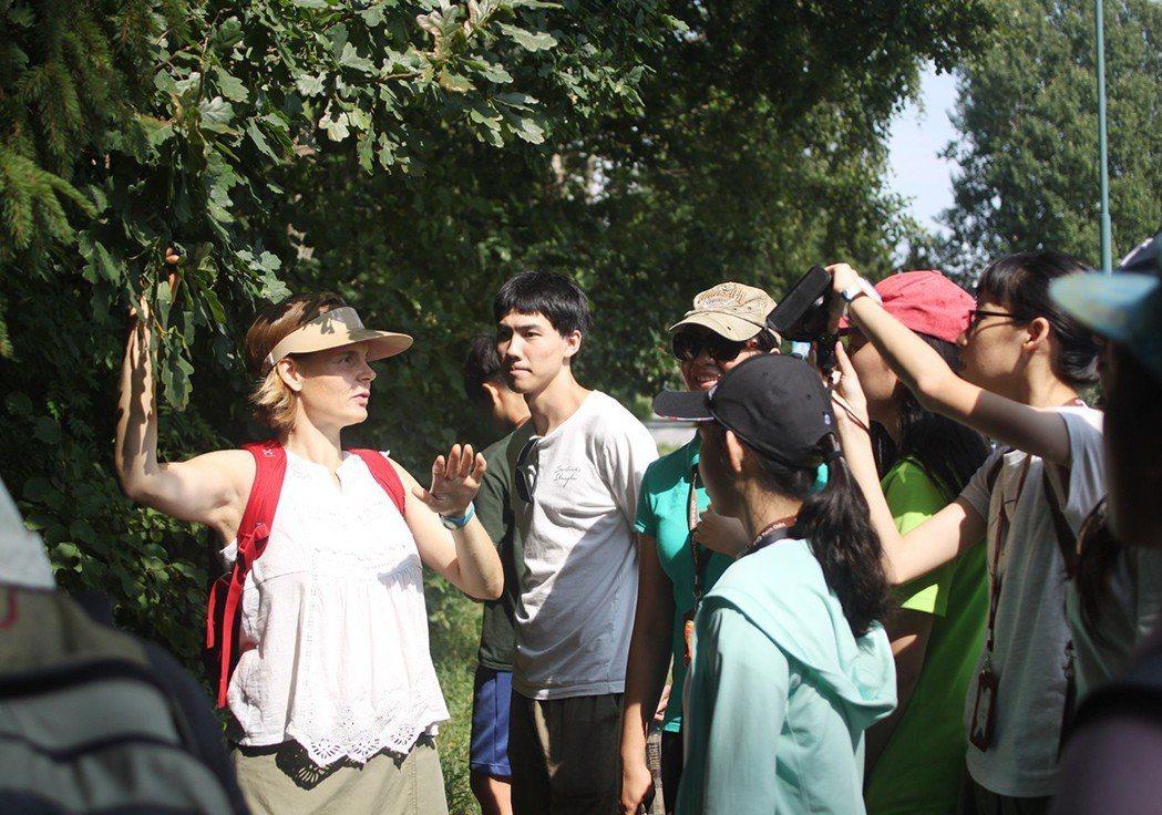 芬蘭的自然科學課,老師帶學生走入森林,實地教學。 雙橡海外教育/提供