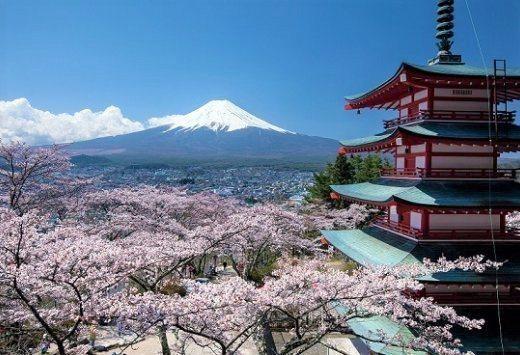 ▲日本櫻花季景點-新倉山淺間公園。(圖/Tripbaa趣吧!亞洲自由行專家)