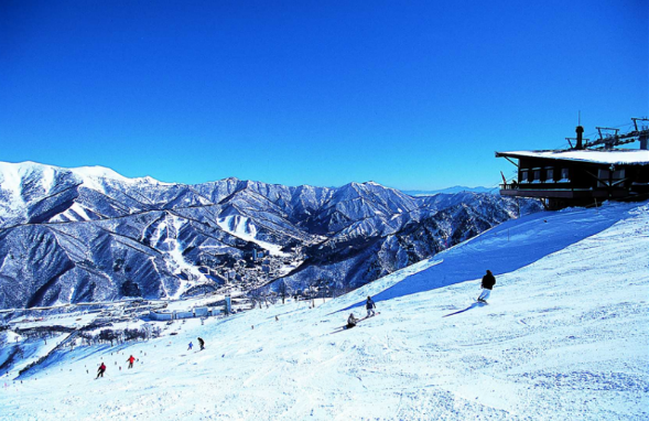 苗場滑雪場。 圖/xinmedia.com