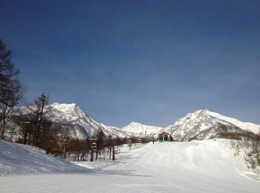 妙高赤倉溫泉滑雪場。 圖/tripadvisor.com