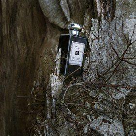 Jo Malone黑瓶再添新成員!「銅木與皮革」香氣超有個性