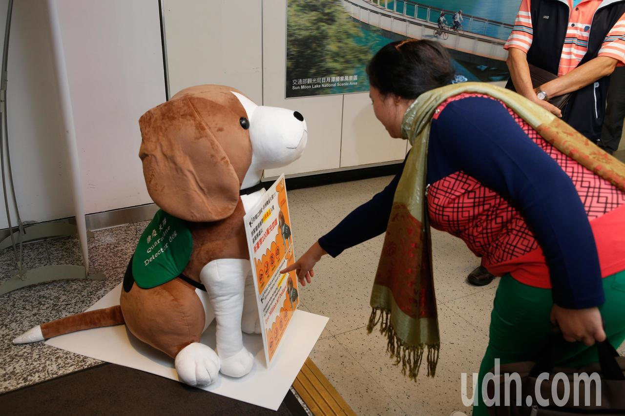 為提醒入境旅客不要攜帶豬肉製品入境台灣,防檢局下午推出可帶的「大型防疫犬布偶」進...