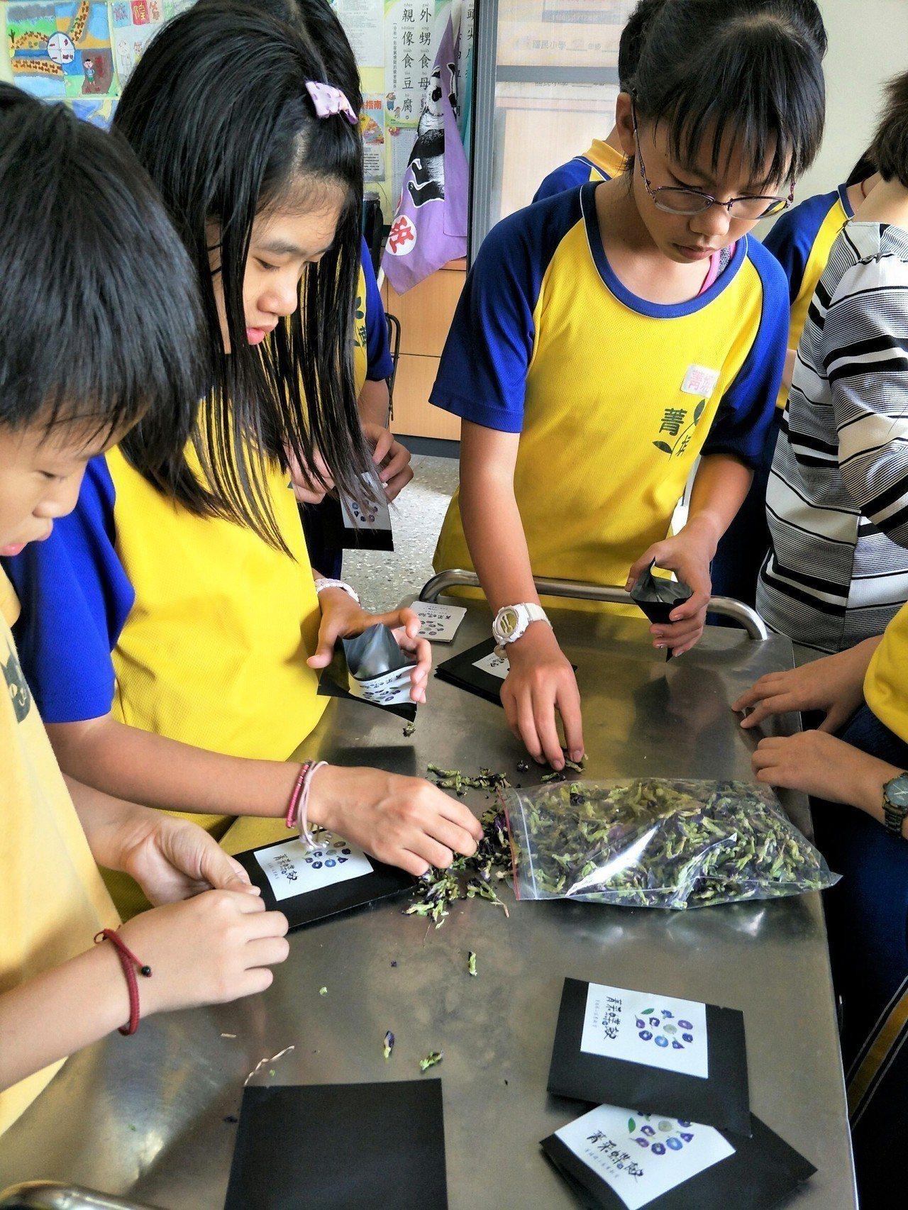 學生們包裝蝶豆花。圖/菁埔國小提供