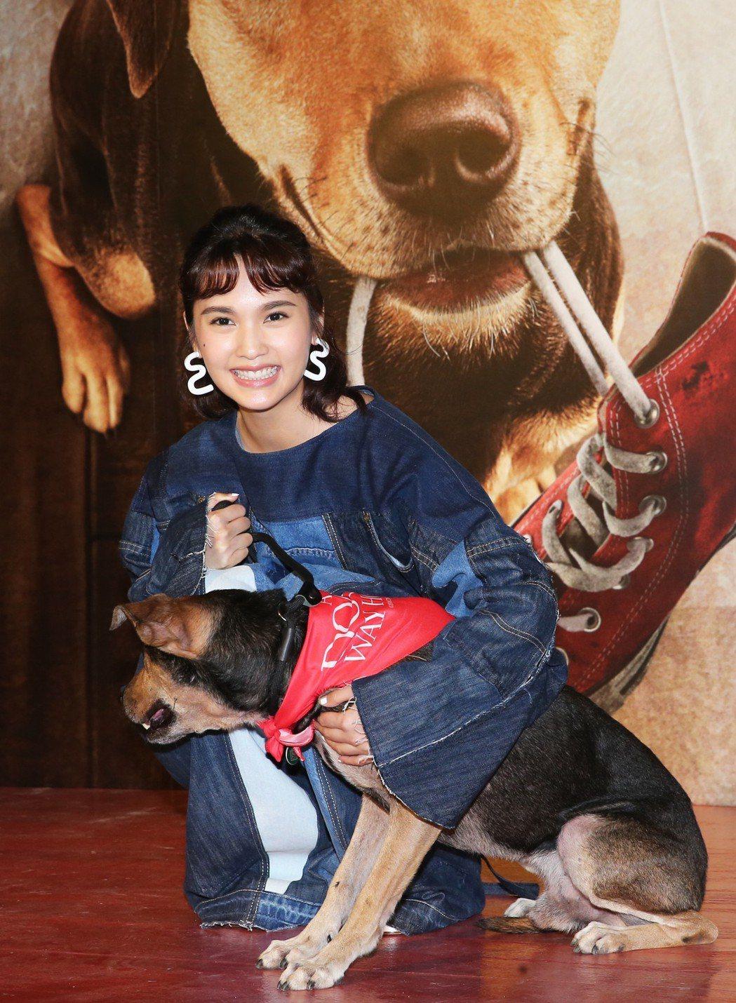 熱愛狗狗的楊丞琳今晚出席電影《為了與你相聚》公益首映會與狗狗合影。記者徐兆玄/攝...