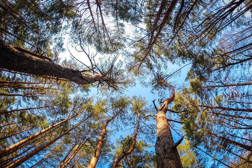 值此地球暖化加速時期,各機關團體、學校及企業不能只觀顧機關企業發展,亦應兼顧社會...