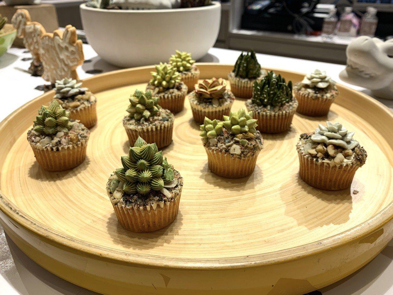 仔細看,這些都是能吃的多肉韓式擠花杯子蛋糕!目前可報名在大安旗艦店開設的DIY課...
