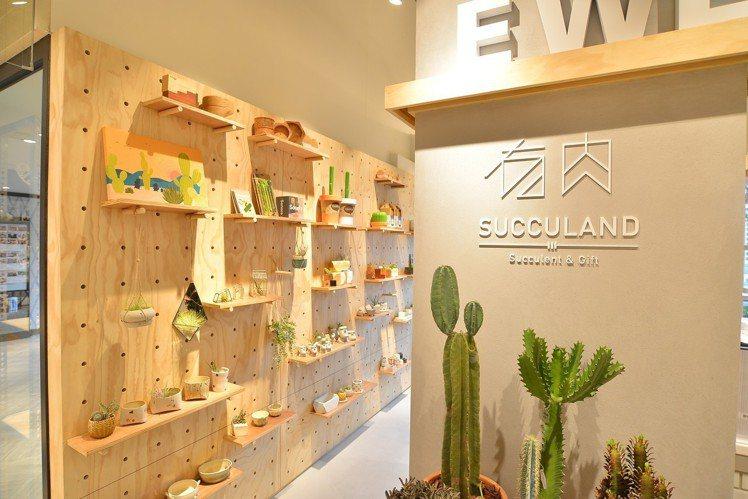 有肉Succulent & Gift以店中店形式加入E WEAR. FAVVI微...