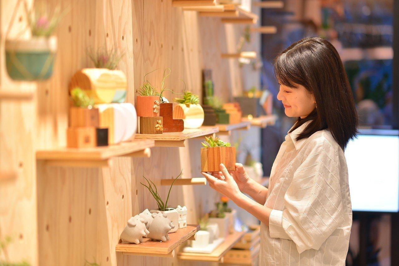 消費者可直接選購已經組好的設計植栽禮品。圖/有肉提供