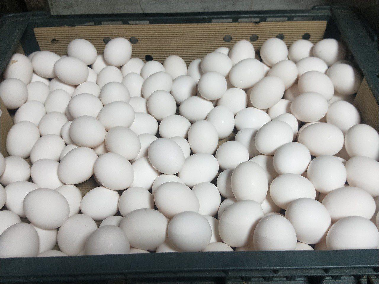 基隆市東信路雞蛋批發商劉家智說,近1個多月來,因為天氣冷,買蛋的人增加很多,以前...