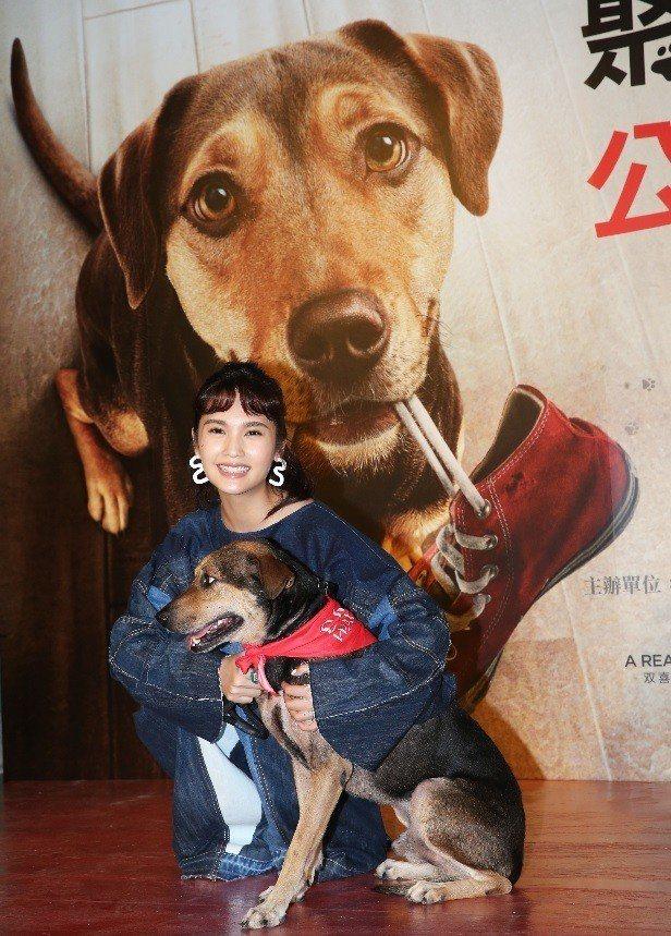 楊丞琳見到可愛的狗狗就忍不住愛的抱抱。記者徐兆玄/攝影
