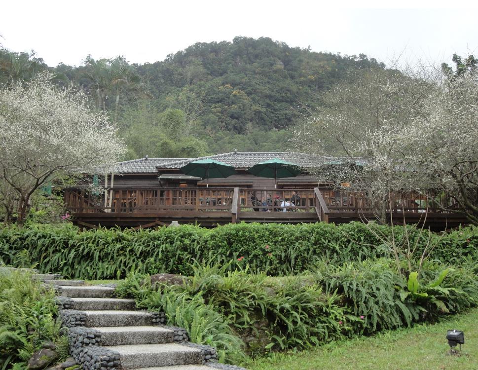 花蓮林田山林業文化園區,保留許多舊日林業遺跡,猶如一座遺世獨立的小山城。圖/花蓮...
