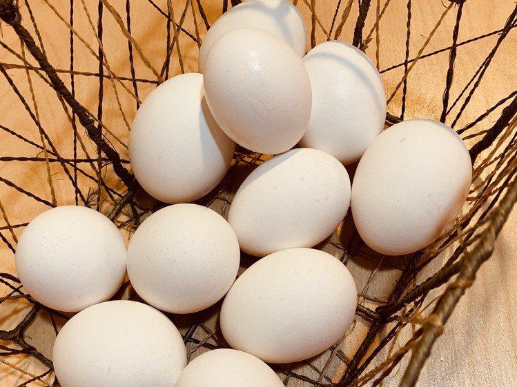 近日雞蛋產地價上揚,通路零售價雖然微幅調升,但供貨量正常,民眾不需恐慌。記者黃筱...