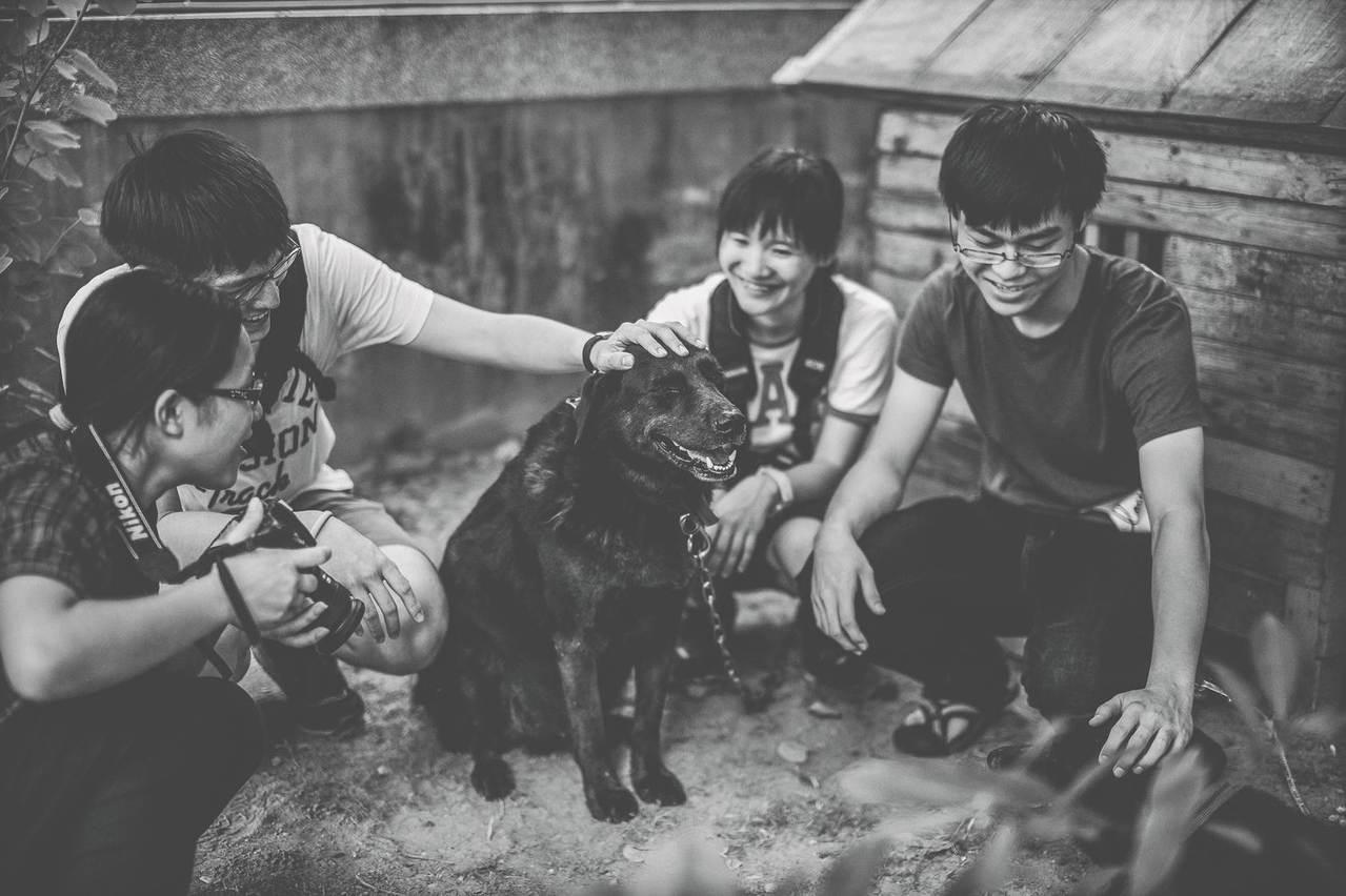 圖為《Dogs in the school 系列02》。高雄醫學大學動保社/提供