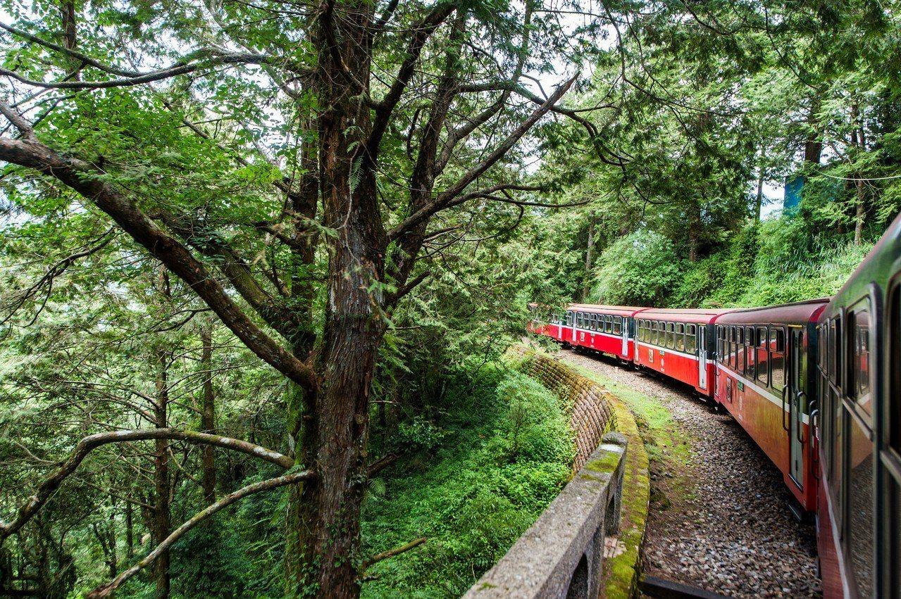 搭乘阿里山森鐵遊玩,來趟時空之旅。