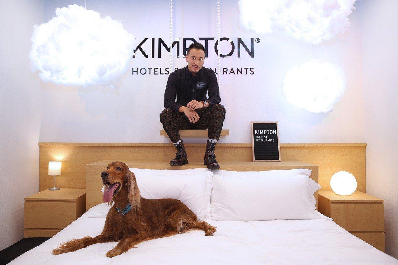 金普頓快閃酒店大使「王陽明」與寵物大使一同入住金普頓快閃酒店,享受寵物樂園。圖/...