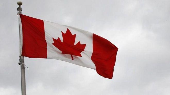 加拿大未來三年將引入逾百萬名新移民。圖為加拿大國旗。路透