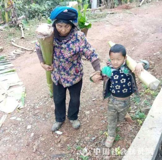 還沒上幼稚園的雲南男童每天跟在奶奶身後,上山拔豬草、扛芭蕉,回家餵雞餵豬。(中國...
