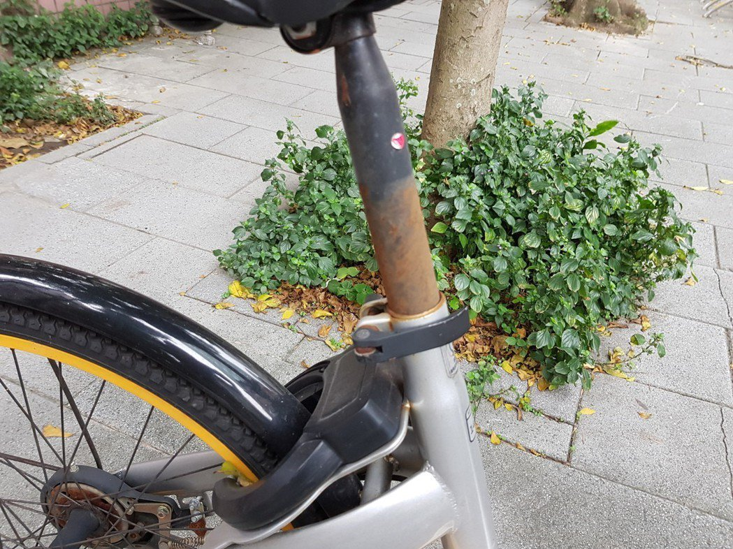 2017年5月在台北正式展開營運的無樁式共享(租賃)自行車oBike,原本在北市...