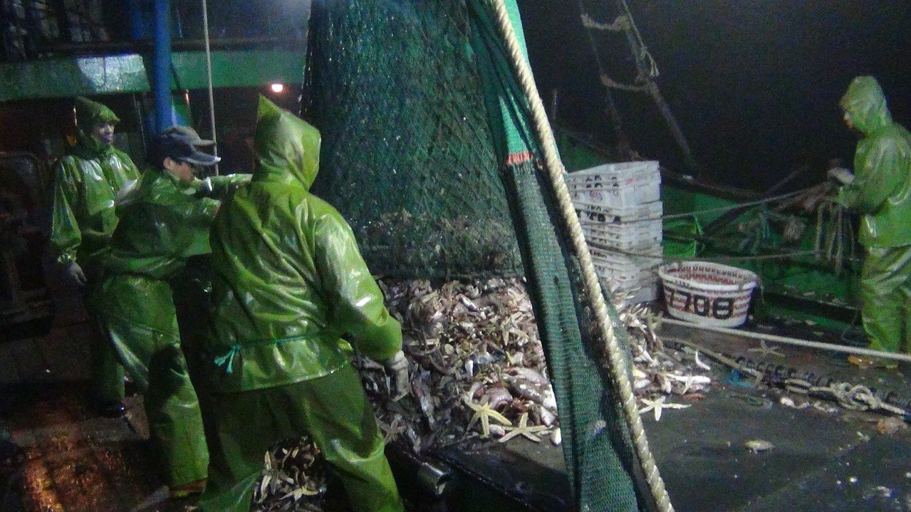 海巡署查獲大陸漁船上有300公斤漁獲,要求當場實施海拋。圖/海巡署提供