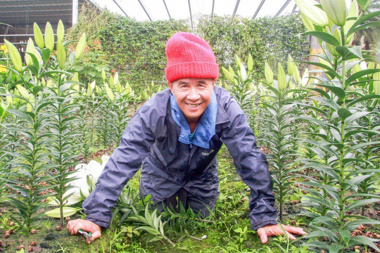 罹患小腦萎縮症的楊文港,目前僅靠4分地大的果園生存,他用跪爬的方式除草、施肥、修...