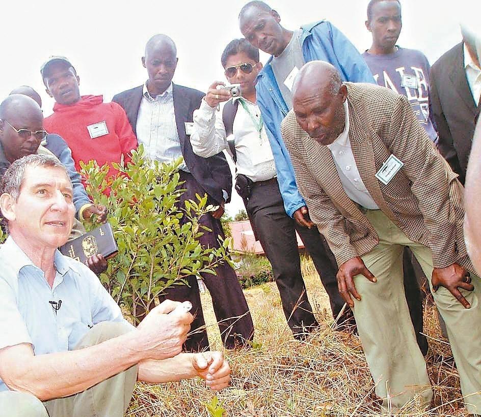 芮納多(左一)展示利用FMNR在低矮灌木叢種植。 圖/取自《衛報》