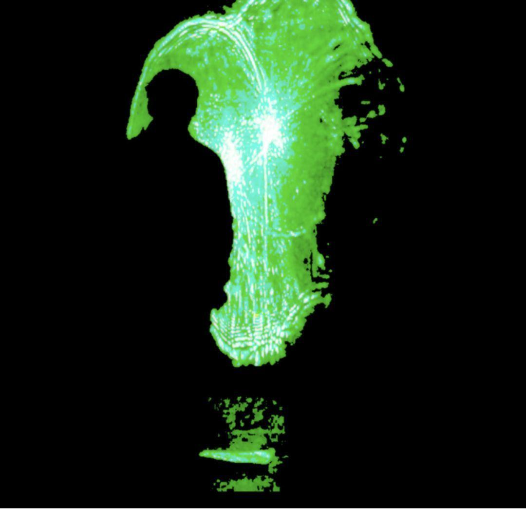 展望〈心形〉2009 彩色無聲錄影 播映長度:15分25秒(影片截圖)