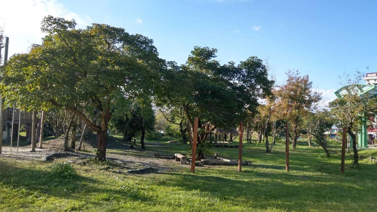 慈心華德福實驗學校開放式校園,綠樹成蔭,鼓勵孩子接觸大自然。 記者戴永華/攝影
