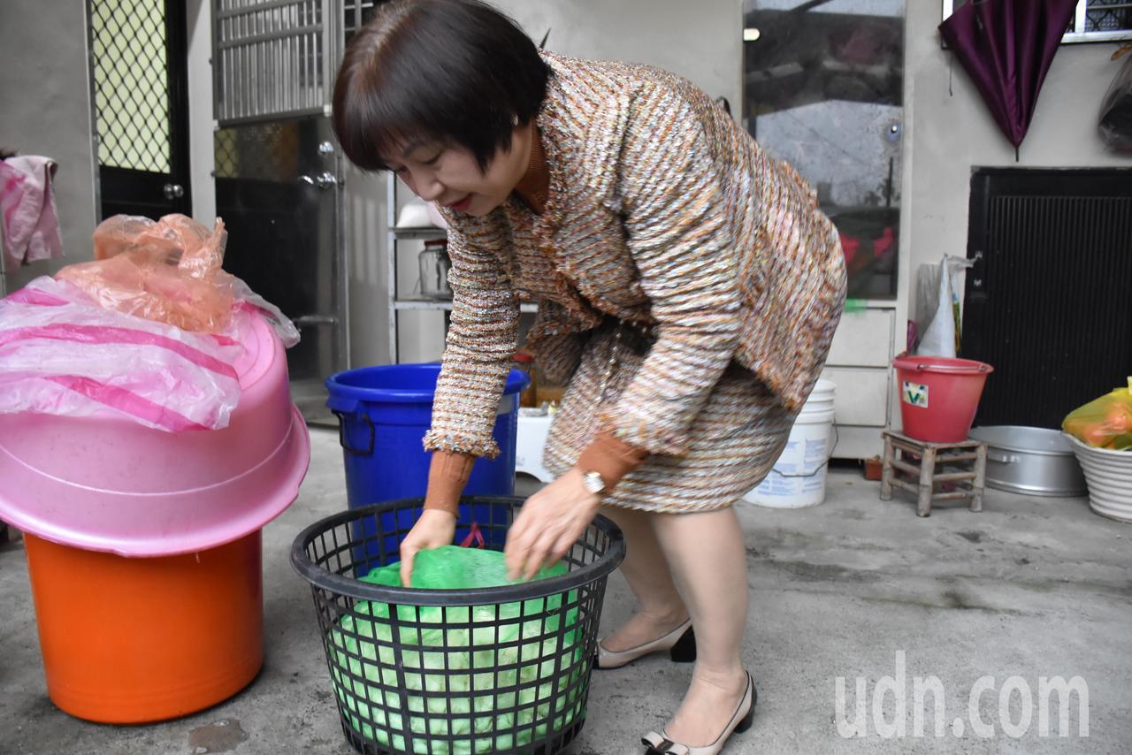 李惠娥示範如何醃製蘿蔔乾。記者江婉儀/攝影