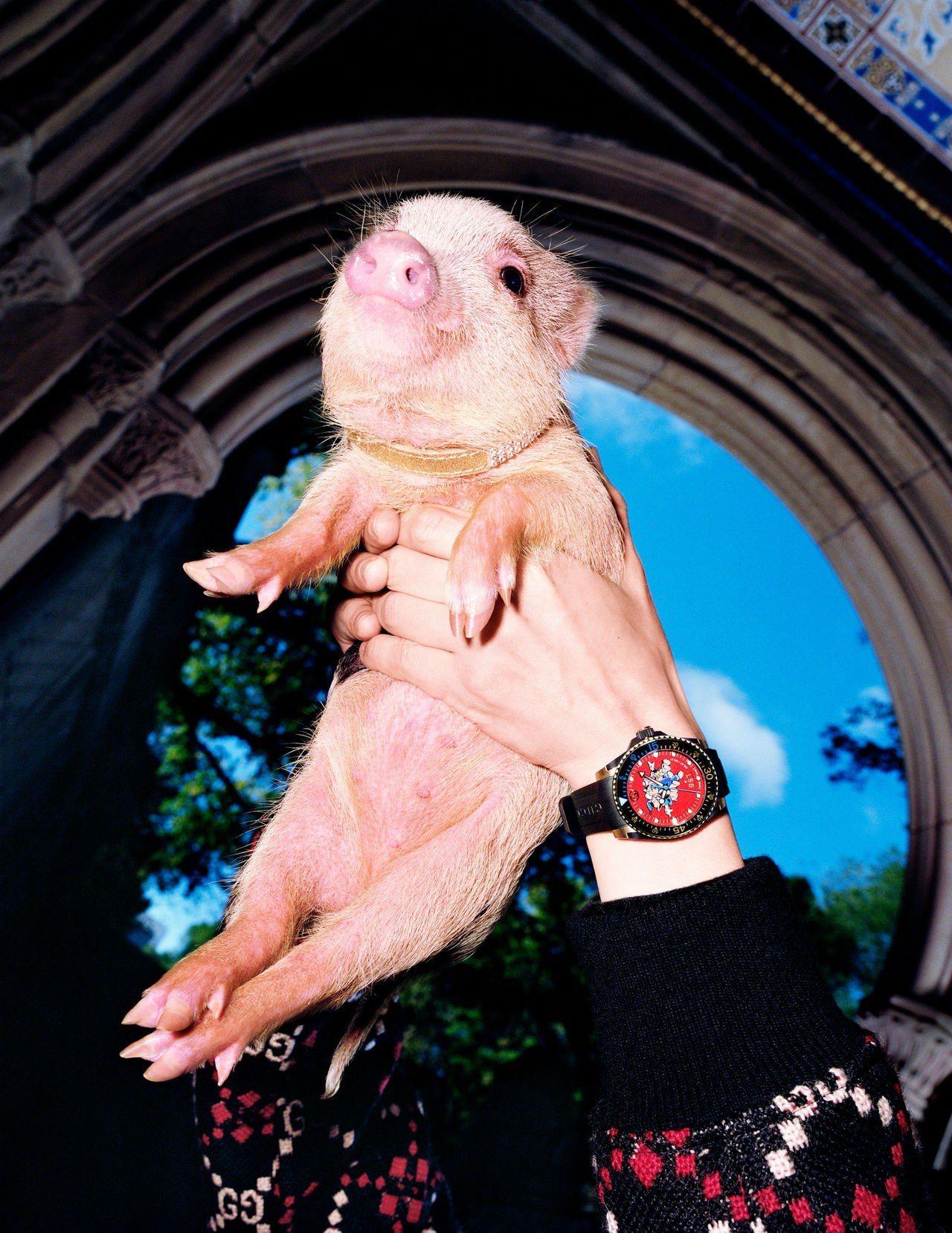 Gucci特別為了今年的「豬」生肖推出一系列小豬圖騰商品,更結合迪士尼經典動畫,...
