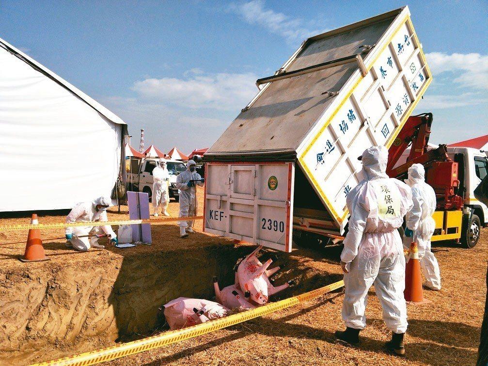 台南市府昨舉辦非洲豬瘟防疫演練,現場模擬啓動掩埋防疫作業。 記者謝進盛/攝影