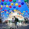 彩虹傘大道繽紛朵朵開 高雄後驛商圈逛街採購還能拍網美照!