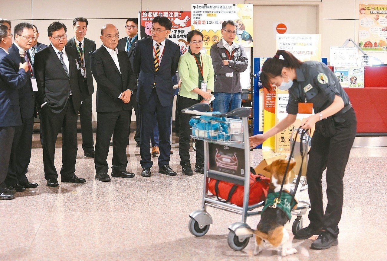行政院長蘇貞昌(前排中)就任後第一個公開行程,就是到桃園機場巡視非洲豬瘟防疫措施...
