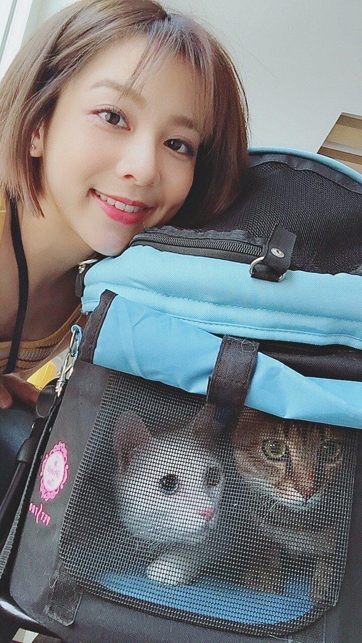 蔡祥和兩隻可愛貓咪。圖/伊林提供