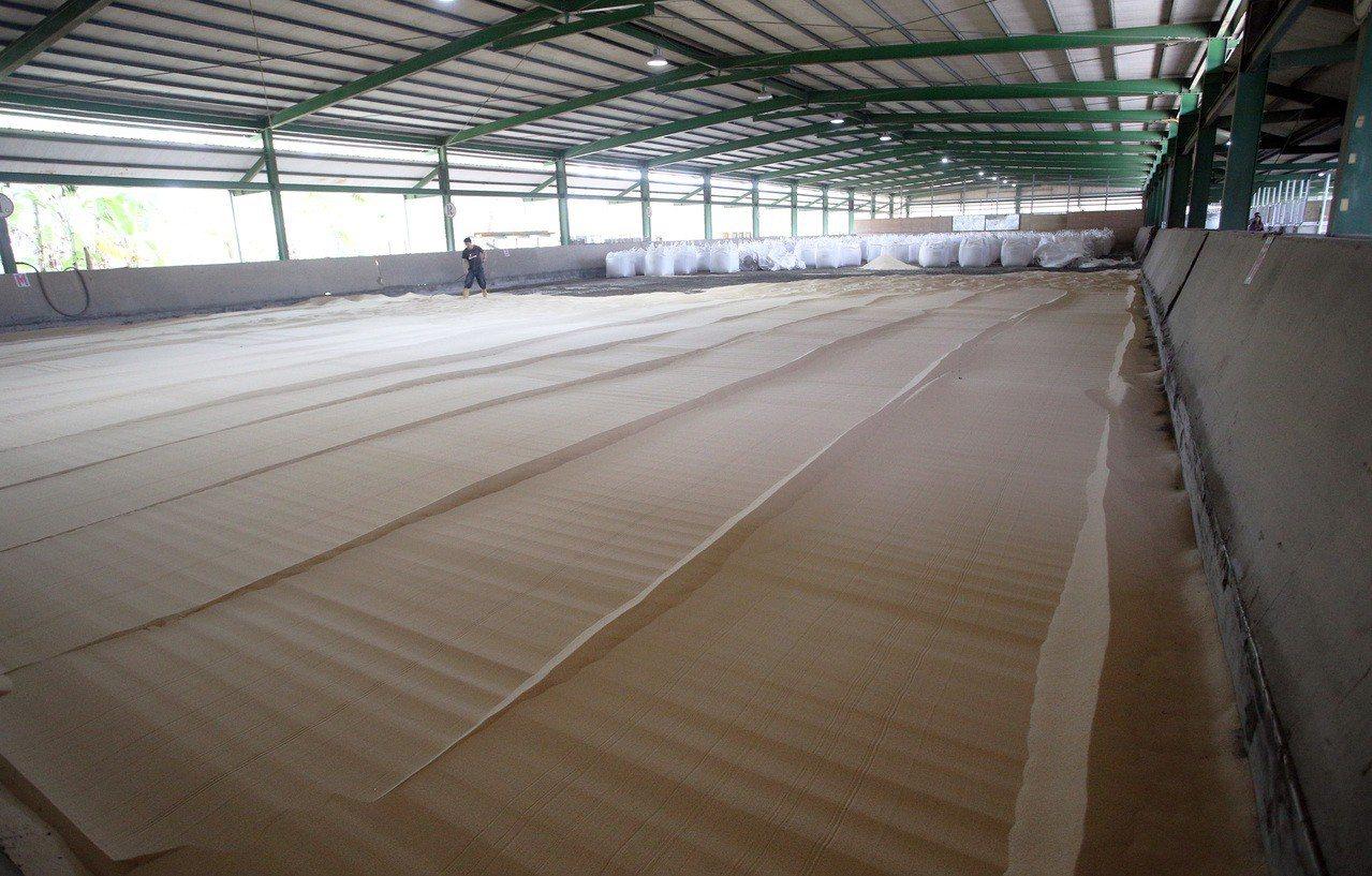即將創立國際規格馬術中心的高雄大社觀音山馬術中心,目前鋪上新沙,全力改裝中。記者...