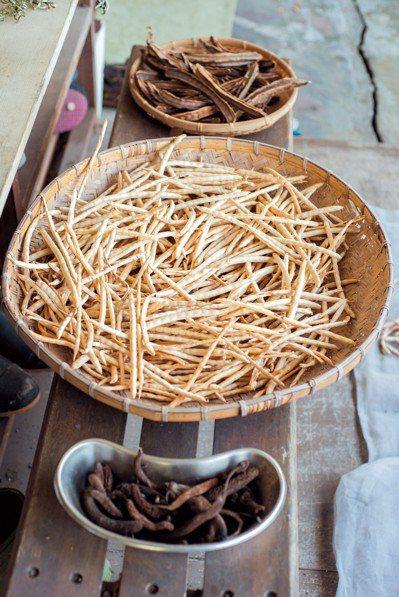 阿美族的生活仍有保種文化,蒐集來的翼豆莢、短豇豆、麵包樹雄蕊,各有用途。攝影/林...