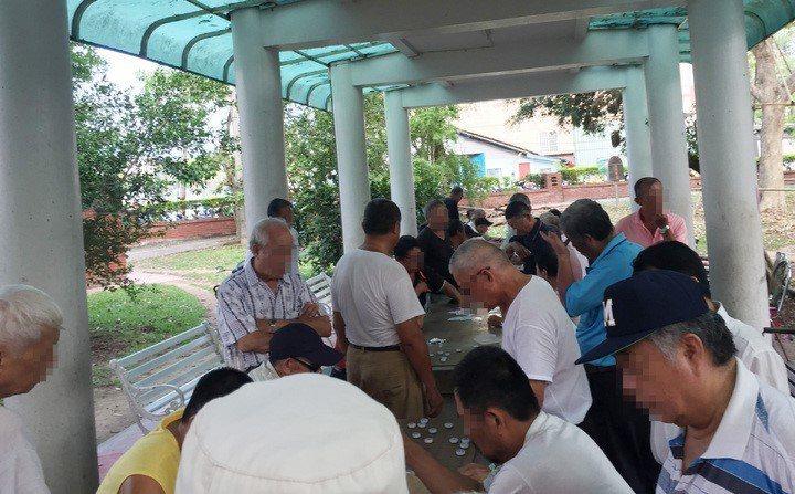 公園裡常常有大量老年人聚集一起喝茶泡茶跟下棋 圖片來源/聯合報系