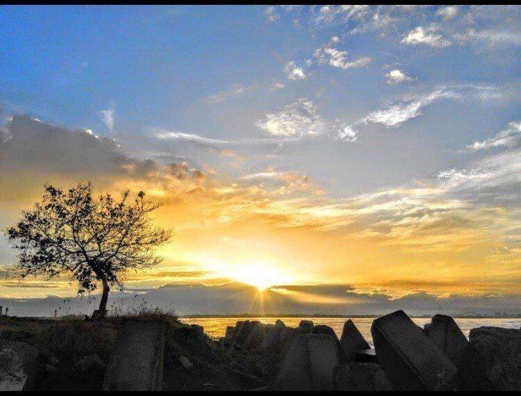 高雄的「市境之南樹」,每天都迎來充滿希望的曙光。 圖/高雄市觀光局提供