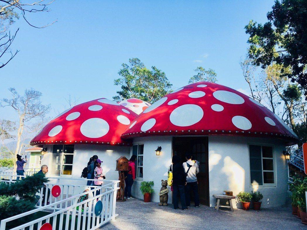 苗栗蘇維埃莊園蘑菇屋。記者張雅婷/攝影