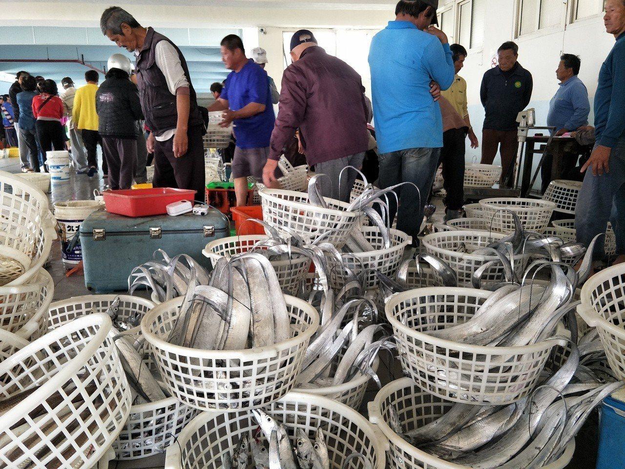 台南將軍及青山漁港都有開放魚貨拍賣,遊客可事前詢問參與。記者謝進盛/攝影