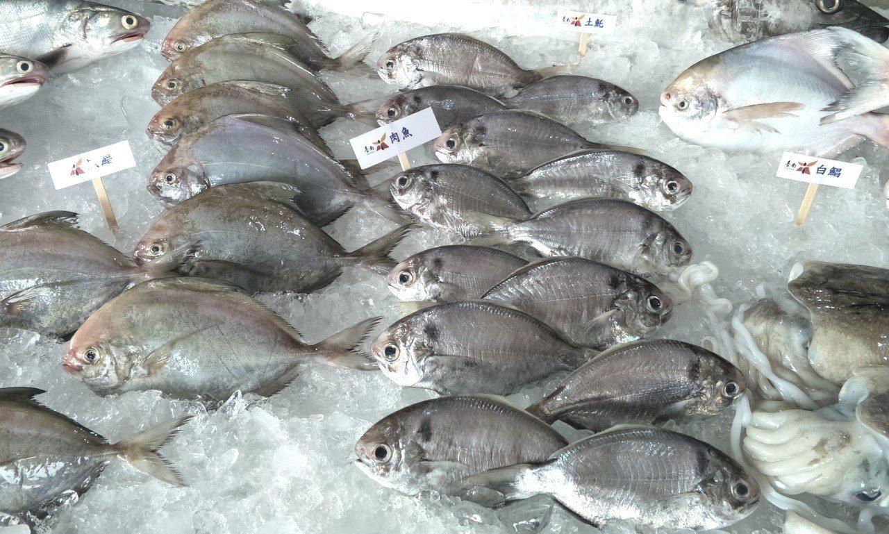 將軍漁港魚貨新鮮美味深受消費者歡迎。記者謝進盛╱攝影