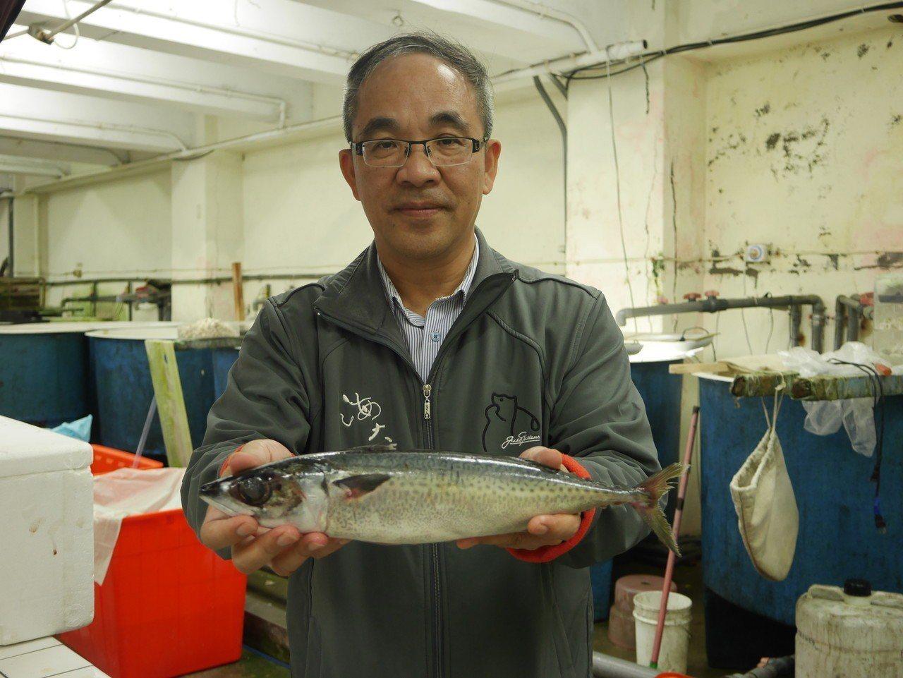 海大教授呂學榮說,紅火心開放100噸漁船進來捕撈,要很小心,別把之前休漁成果毀於...