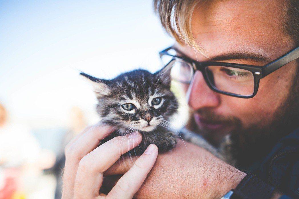 跟寵物說話,是一種同理心的展現。圖/摘自stocksnap