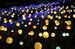 台南月津港燈節又來了!帶你搶先看哪些作品可以打卡